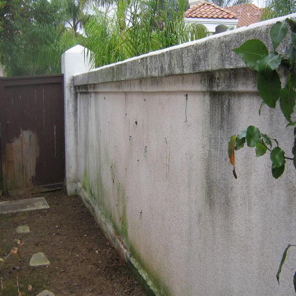 Fence Wash-Fence Pressure Washing