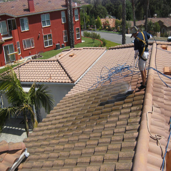 Roof Cleaning Technician